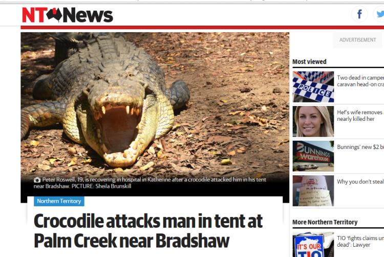 nt-news-croc-katherine