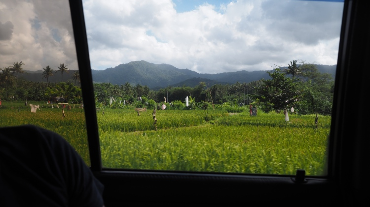 bali-indonesia-ubud