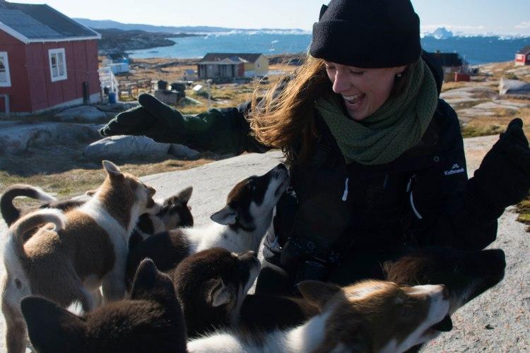 greenland-oqaatsut-ilulissat-huskies