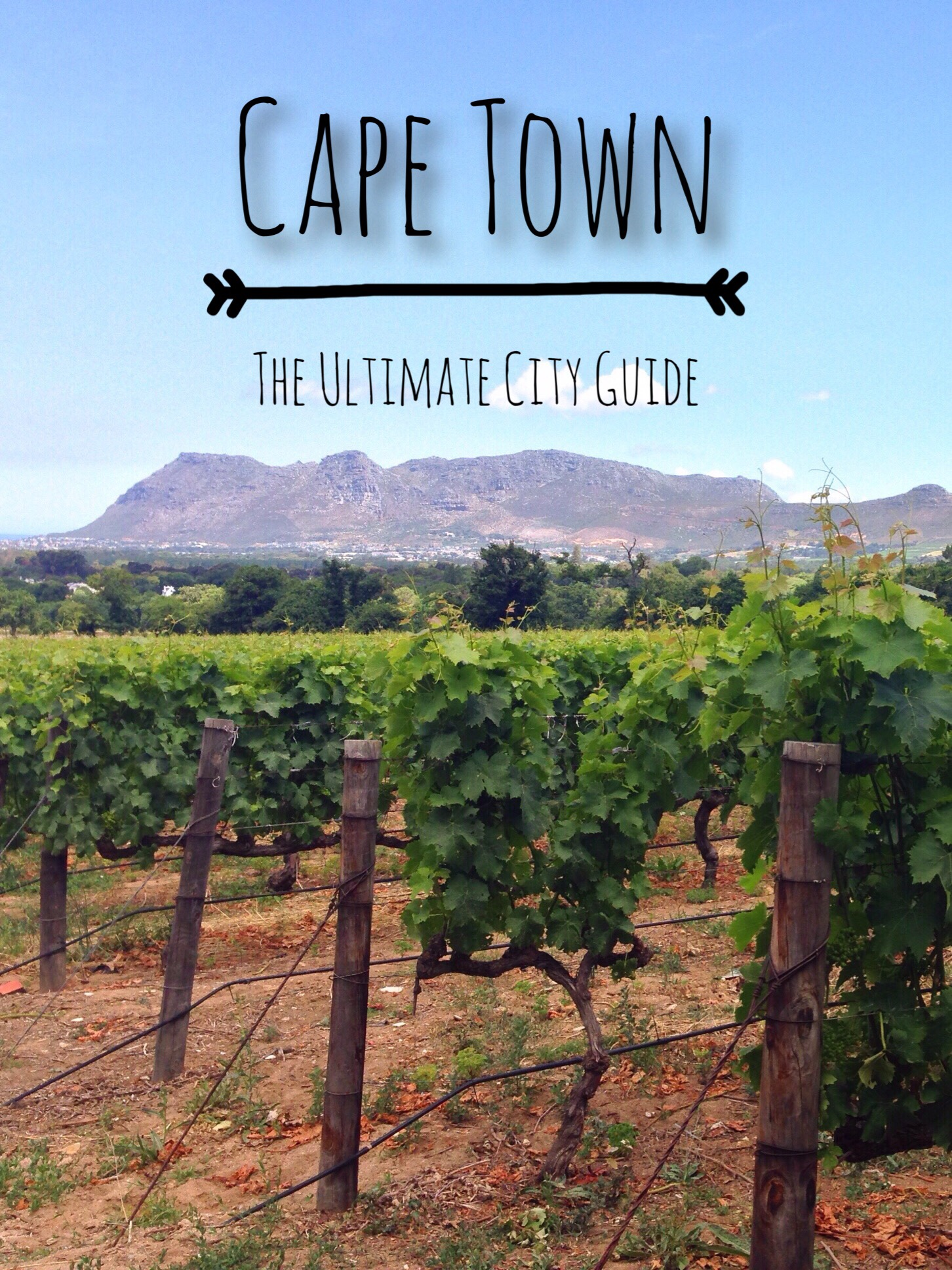 ultimate cape town travel guide
