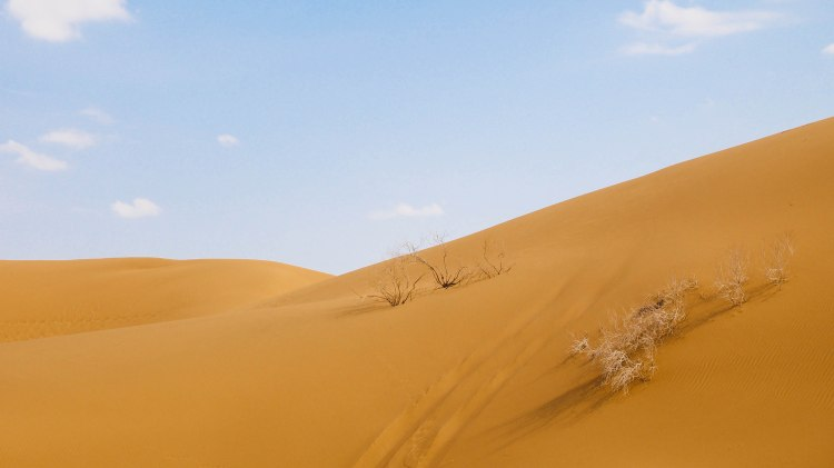 iran-travel-blog-maranjab-desert-kashan-solo-backpacking